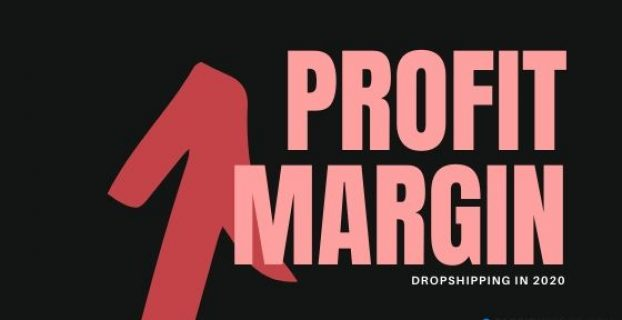 Dropshipping Profit Margin